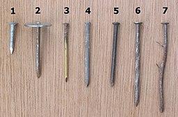 Spijkers_(Nails).jpg